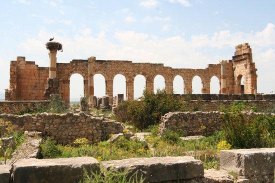 Meknes-Tafilalet