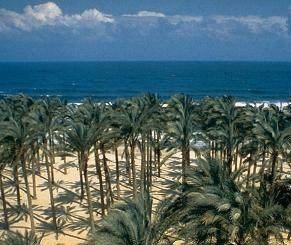 North Sinai