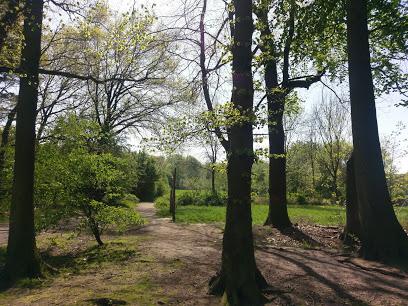Hohenhorster Wald