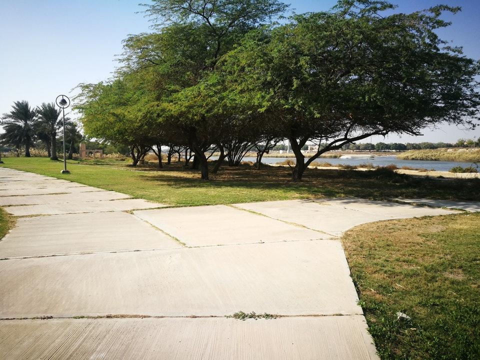 حدائق ترفيهي | حدائق | منتزه الملك سلمان