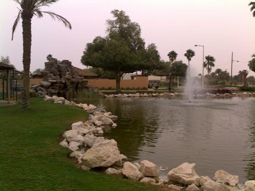 saner park