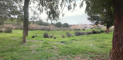 Al Anteez Park