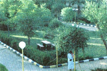 حديقة المدابلة