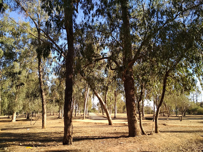 Ghabat al Mrabbou Park