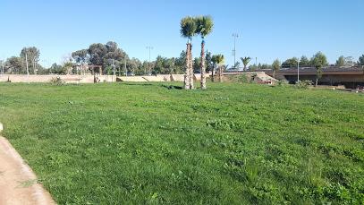 CGI-isly Public Garden