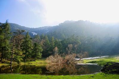 Theniet el Had Tissemsilt National Park
