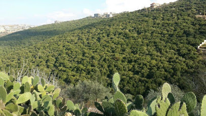 Kafra Nature Reserve