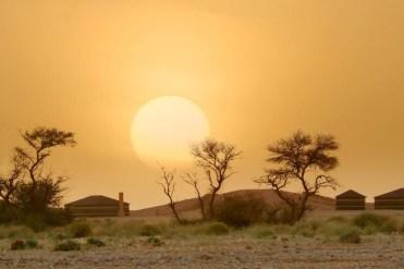 Al Thamamah Wildlife Park