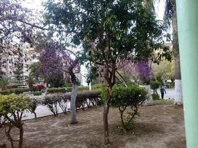 Jardin Khemisti