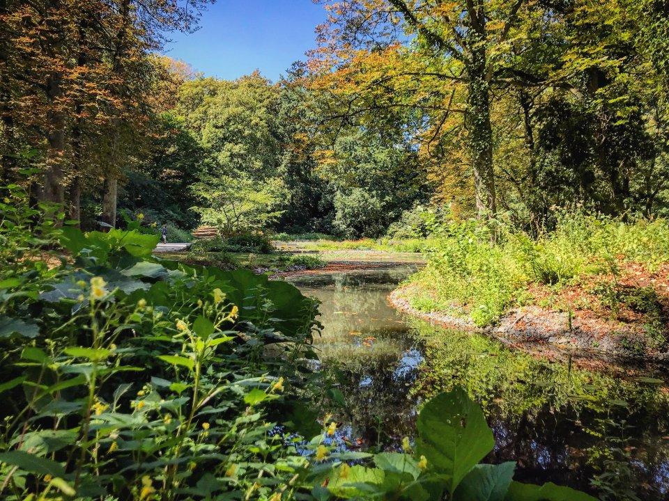 Schlosspark Essen-Borbeck