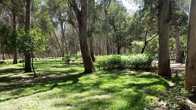 "Forêt Urbaine Ibn Sina ""Hilton"""