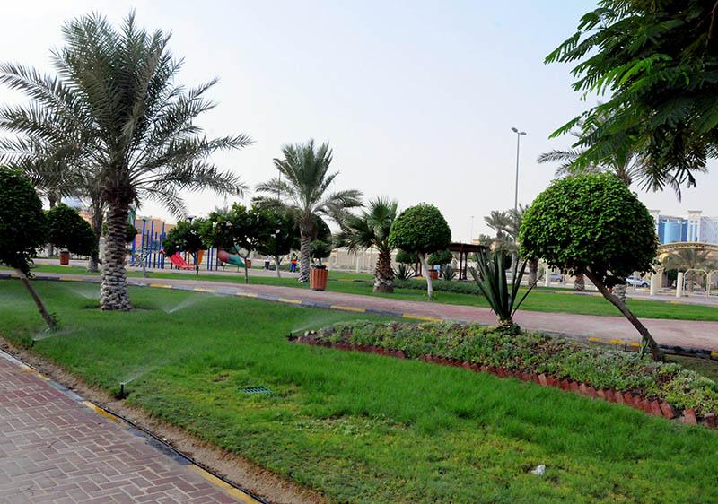Wonderful Garden