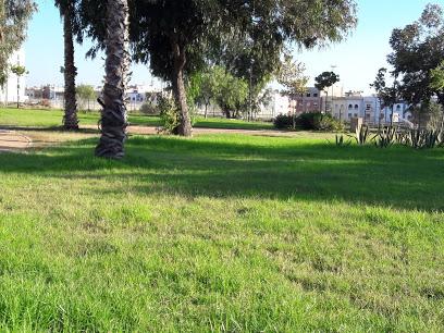 Parc Casa Nearshore
