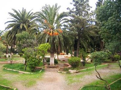The public park