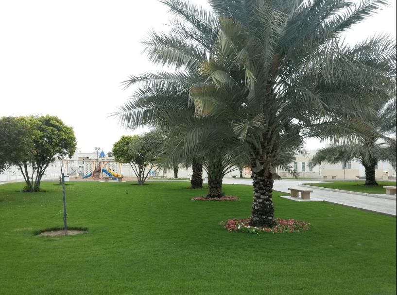 حديقة القادسية
