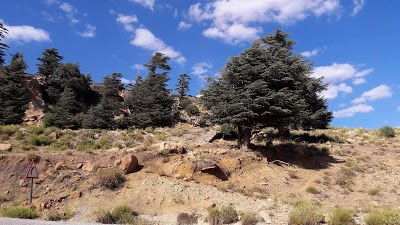 Parc National de Chélia