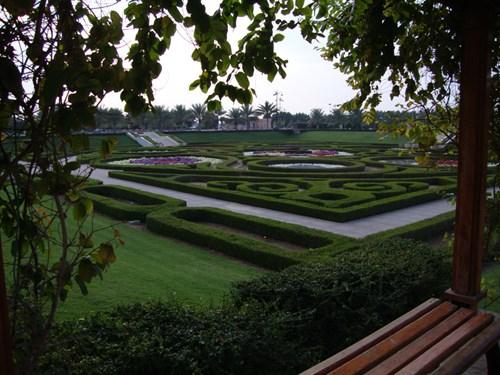 اخبار عن حدائق الصحوة