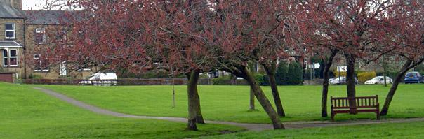 Riverside Gardens Park