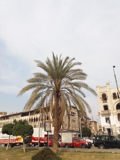 Al - Hafeeh Park