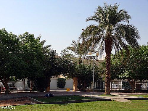 حديقة الضحي
