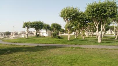 Doha Family Park