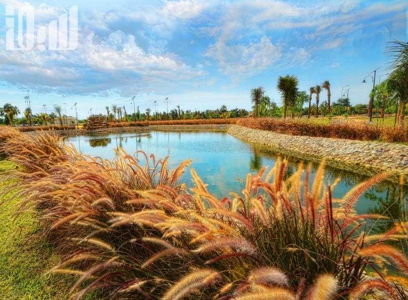 بحيرة ينبع الصناعية (حديقة الطيور)