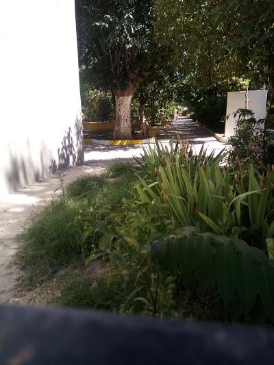 حديقة للتنزه