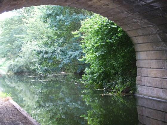 Bramley Falls Wood Park