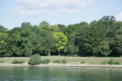 Waldpark - Mannheim