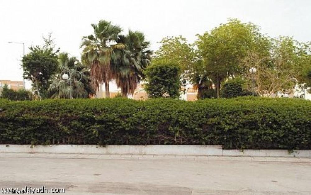 AL Durahemia Park