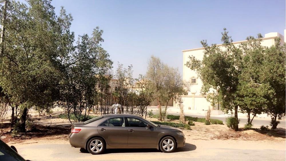 Al - Mubarakiya Park 2