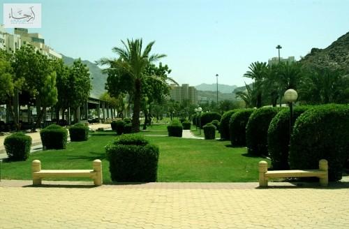 حديقة المعلم