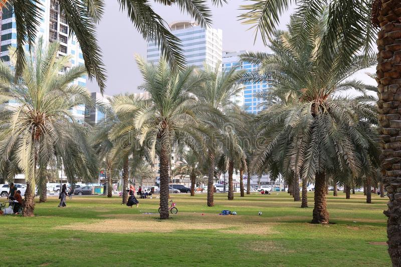 Al Nekhalat Park