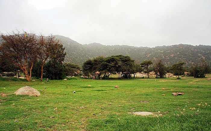 AL Harabi Park