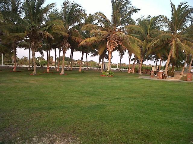 Al Shafa Park