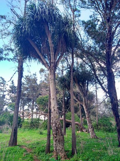 La Hipica Garden
