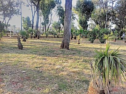 Jardin 20 Aout