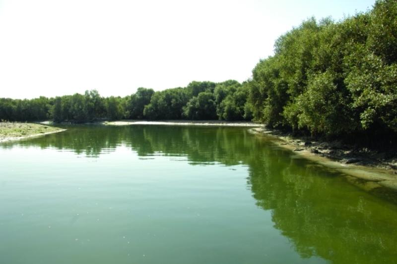 منتزه القرم الوطني