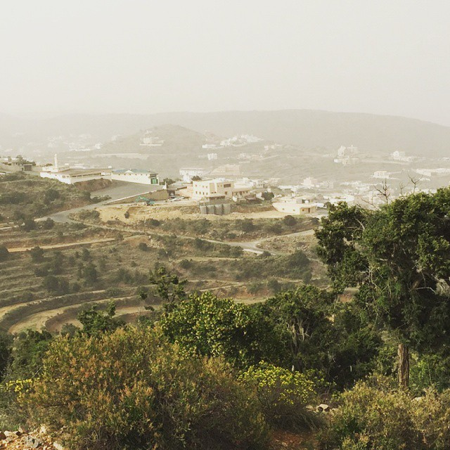 AL Sehab Park