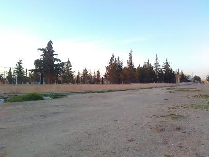 Garden - Sidi Baezid