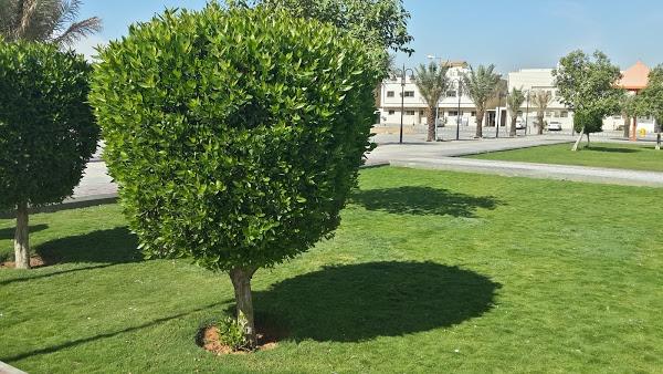 AL Sanabel Park