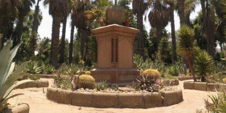 Cactus Garden Inshas