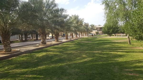 حديقة الروابي الأولى