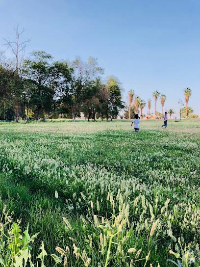 حديقة الامير سلطان بن عبدالعزيز