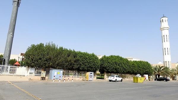 AL Maram Park