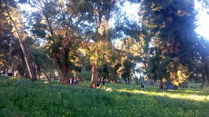Park naturel
