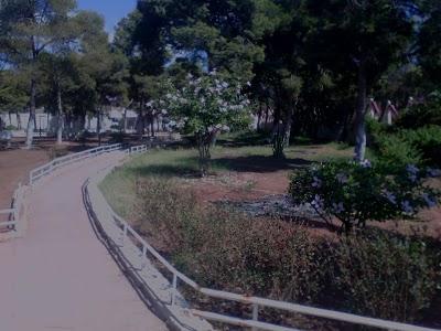 Alshahid hamamadat sharif park
