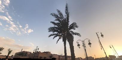 حديقة سيدي حمد الكامل