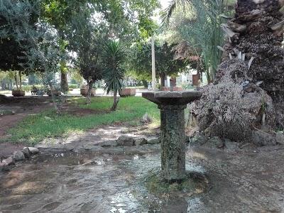 حديقة حبيب ثامر