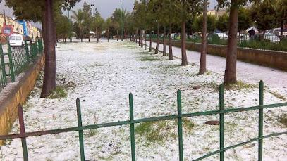 Al'umam park